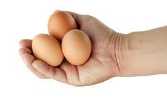 Ägg i mänsklig hand och vitbakgrund Royaltyfria Bilder