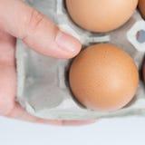 Ägg i magasin på räckt Royaltyfria Foton