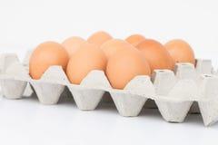 Ägg i magasinet med isolatbakgrund Arkivbild