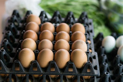 Ägg i packen Fotografering för Bildbyråer