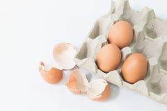 Ägg i packen med äggskalet royaltyfri foto