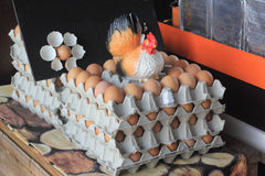 Ägg i packen med den fega dockan Arkivfoto