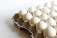 Ägg i packen, vita ägg i packe på vit bakgrund Royaltyfria Bilder