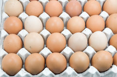 Ägg i pappers- magasin, bruna ägg i en ägglåda Royaltyfria Foton