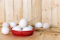 Ägg i röd plast- korg Arkivfoto