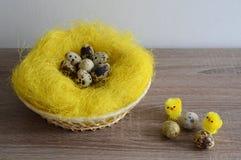 Ägg i rede och liten höna två Arkivbild