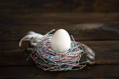 Ägg i redet av trådar, kulör tråd arkivbild
