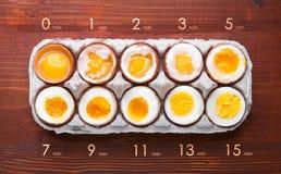 Ägg i varierande grader av tillgänglighet beroende av tiden av kokande ägg Royaltyfri Foto