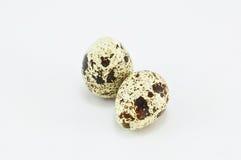ägg isolerad quailwhite Royaltyfria Foton