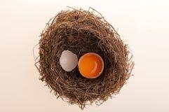 ägg isolerade white Arkivfoton