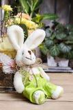 Ägg, knäpp blomma och randig torkduk Royaltyfri Bild