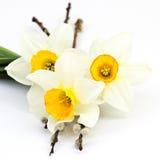 Ägg, knäpp blomma och randig torkduk Arkivfoton