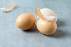 Ägg läggas på bordlägga Arkivbilder