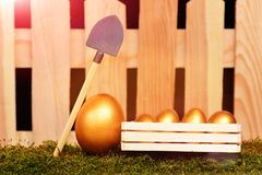 Ägg målade i guld- färg på mossa med skyffeln Royaltyfri Bild