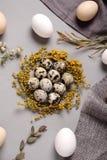 Ägg med blommor och dekorativa beståndsdelar på betong Royaltyfri Foto