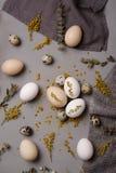 Ägg med blommor och dekorativa beståndsdelar på betong Arkivbilder