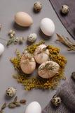 Ägg med blommor och dekorativa beståndsdelar på betong Arkivbild