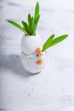 Ägg med blommor på en vit bakgrund easter symboler Arkivbilder