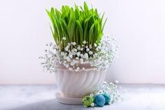Ägg med blommor på en vit bakgrund easter symboler Arkivfoton