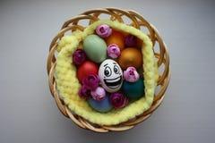 Ägg med en gullig framsida Foto för din design Royaltyfria Bilder