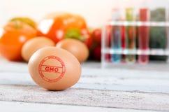 Ägg med GMO ändrade stämpeln Genetiskt ändrad matbefruktning Arkivbild