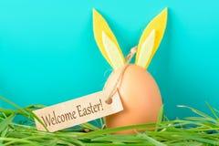 Ägg med kaninöron som säger välkommen påsk Royaltyfria Bilder