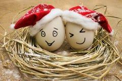 Ägg med personer i redet för jul Arkivfoto