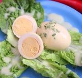 Ägg med senapsgult sås Arkivbilder