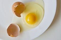 Ägg med skalet Arkivbild