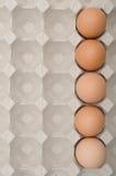 Ägg nummer ett arkivfoton