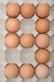 Ägg nummer nio Royaltyfri Fotografi
