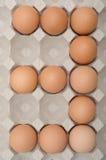 Ägg nummer tre Arkivfoton
