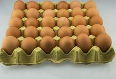 Ägg och äggmagasin Arkivbild