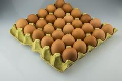Ägg och äggmagasin Royaltyfria Bilder