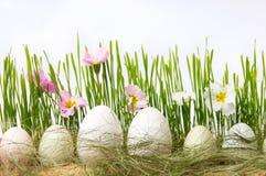 Ägg och blommor för vit fega i vete Arkivfoto