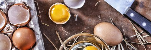Ägg och ett skal Royaltyfri Foto