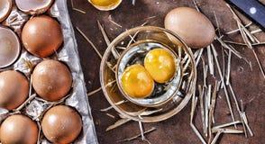Ägg och ett skal på lantgården Royaltyfri Foto