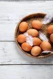 Ägg och fjäder på magasinet Fotografering för Bildbyråer