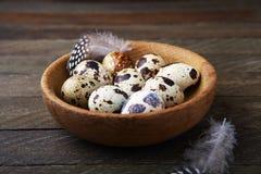 Ägg och fjädrar i en bunke Arkivbild