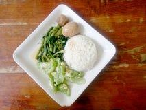 Ägg och griskött i grodor för brun sås, uppståndelse Fried Swamp Cabbage och uppståndelse stekte zucchinin med ägget med ris thai Fotografering för Bildbyråer