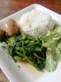 Ägg och griskött i grodor för brun sås, uppståndelse Fried Swamp Cabbage och uppståndelse stekte zucchinin med ägget med ris thai Royaltyfri Bild