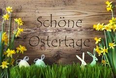Ägg och kanin, Gras, lycklig påsk för Schoene Ostertage hjälpmedel Arkivfoto