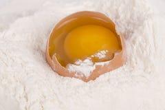 Ägg och mjöl Arkivbilder