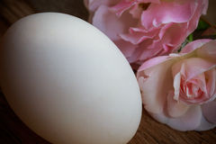 Ägg och steg på trä Royaltyfria Foton