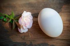 Ägg och steg på trä Royaltyfri Bild