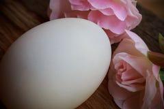 Ägg och steg på trä Royaltyfri Fotografi