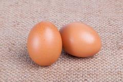 Ägg på den bruna säcken Royaltyfria Foton