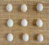 Ägg på den matta korgen Arkivfoto