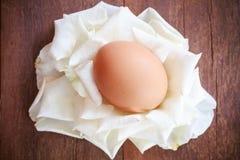 Ägg på det vita kronbladet Arkivfoto