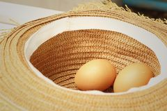 Ägg på en bakgrund av den bruna hatten Arkivbilder